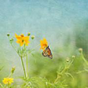 In The Garden - Monarch Butterfly Art Print