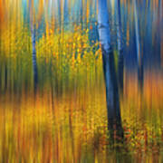 In The Golden Woods. Impressionism Art Print