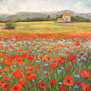 In The Poppy Field Art Print