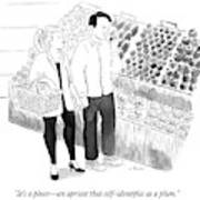 In The Produce Section Of A Grocery Store Art Print