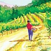 In The Vineyard Art Print