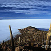 Incahuasi Island And Salar De Uyuni Art Print