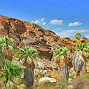 Indian Canyons View In Palm Springs Art Print