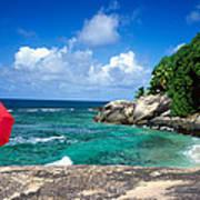 Indian Ocean Moyenne Island Seychelles Art Print