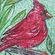 Indiana Cardinal Redbird Art Print
