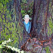Indiana Jones In Armstrong Redwoods State Preserve Near Guerneville-ca Art Print