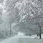 Indiana Snow Art Print