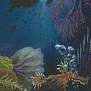Indigenous Aquatic Creatures Of New Guinea Art Print by Beth Dennis