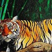 Indochinese Tiger Art Print