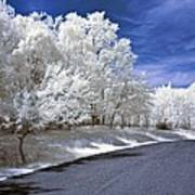 Infrared Road Art Print