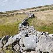 Inis Mor Fields Of Stone Art Print