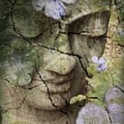 Inner Tranquility Art Print