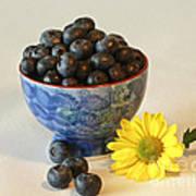 Inspired By Blue Berries Art Print