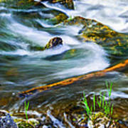 Intimate With River Art Print