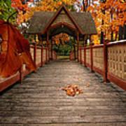 Into The Autumn Art Print