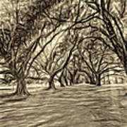 Into The Deep South - Paint 2 Sepia Art Print