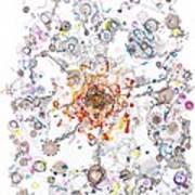 Intracellular Diversion Art Print