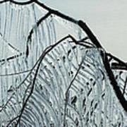 Intricate Ice Curtains Art Print