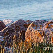 Inverness Beach Rocks  Art Print