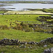 Ireland Farm Art Print
