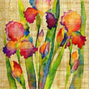 Iris Elegance On Yellow Art Print