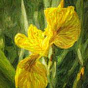 Iris Pseudacorus Yellow Flag Iris Art Print