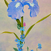 Iris With Forget Me Nots Art Print