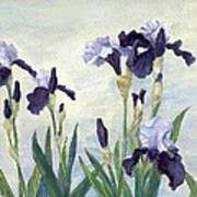 Irises Purple Flowers Painting Floral K. Joann Russell                                           Art Print