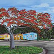 Isabela Puerto Rico Art Print