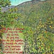 Isaiah 60 13 Art Print