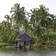 Isla Tigre - Hut Over Water And Palm Trees Art Print