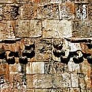 Israel Wall Bas Relief Art Print