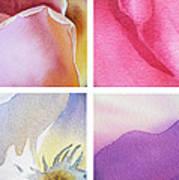 It Is All In Petals Art Print