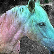 It's 1970 And I Want A Groovy Rainbow Pony Art Print