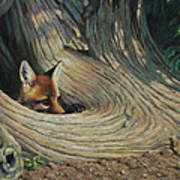 Fox - It's A Big World Out There Art Print