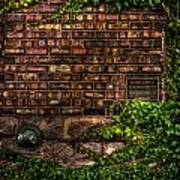 Ivy And Bricks Art Print
