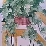 Ivy Art Print by Sherry Harradence