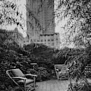Jack Little's Garden In New York City Art Print