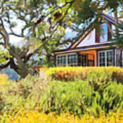 Jack London Countryside Cottage And Garden 5d24570 Art Print by Wingsdomain Art and Photography