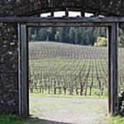 Jack London Ranch Winery Ruins 5d22132 Art Print