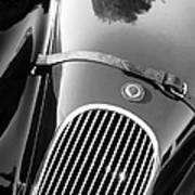 Jaguar Hood Emblem - Grille Art Print by Jill Reger