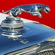 Jaguar Hood Ornament 2 Art Print
