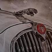 Jaguar Mk II Bonnet Art Print