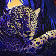Jaguar- The Spirit Of Belize Art Print