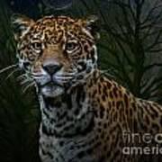 Jaguar Two Art Print
