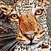 Jaguareyes Art Print
