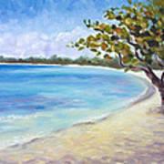 Jamaican Sanctuary Art Print