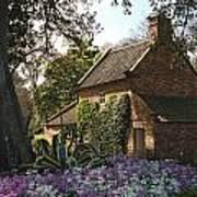 James Cook's Cottage Art Print