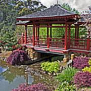 Japanese Bridge At Emu Valley Print by Tony Crehan
