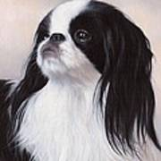 Japanese Chin Painting Art Print